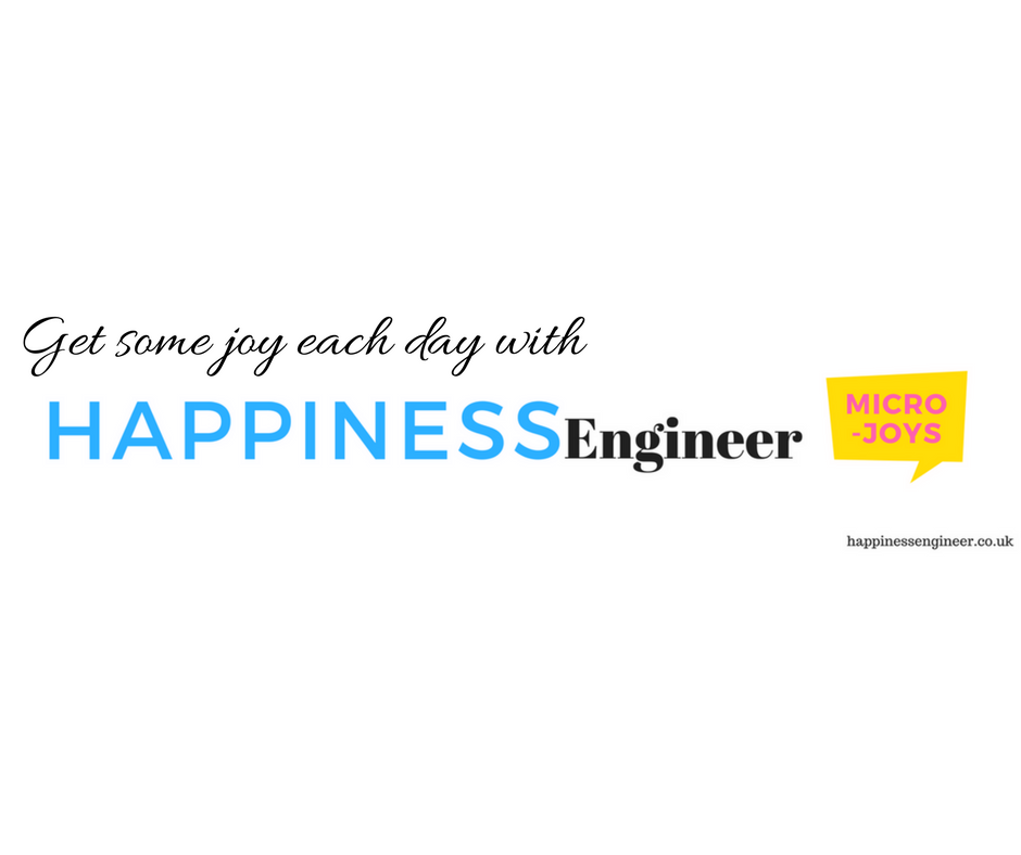 Visit the Happiness Engineer Website