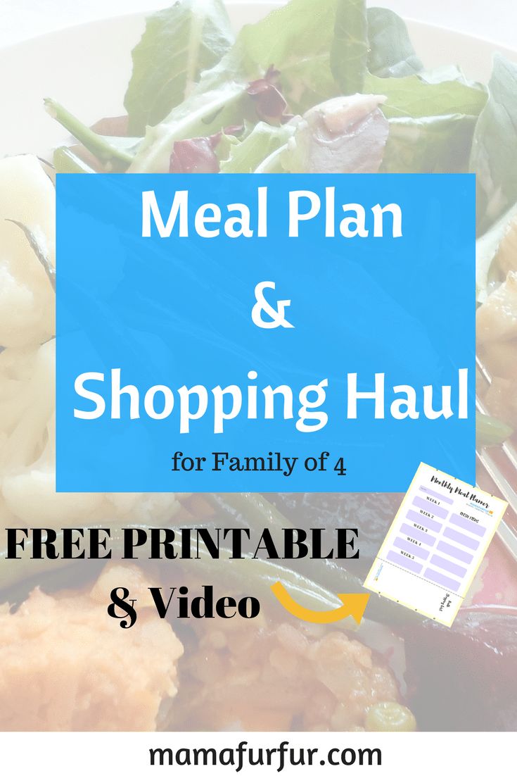 March Meal Plan & Shopping Haul Meal Planning #mealplanning #householdtips #smarterspending #mealplan #budgeting
