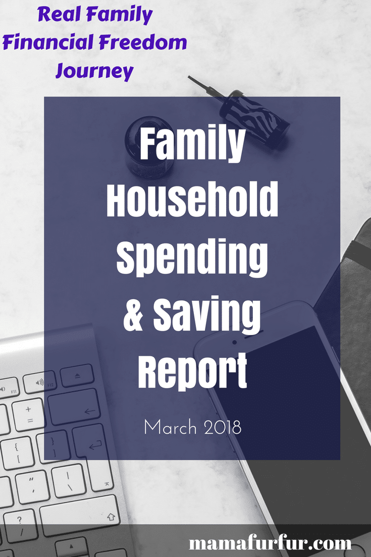 Family Household Spending & Saving Update ¦ Real Family Budget Report #budgeting #financialfreedom #goals #debtfree