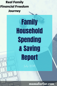 July 2018 Family Household Spending & Saving Update ¦ Real Family Budget Report