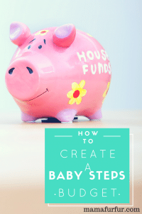 How to create a Baby Steps Budget