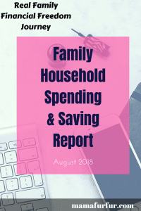 Family Household Spending and Saving Report August 2018 - Real family financial freedom journey #budgeting #financialfreedom #smarterfinances
