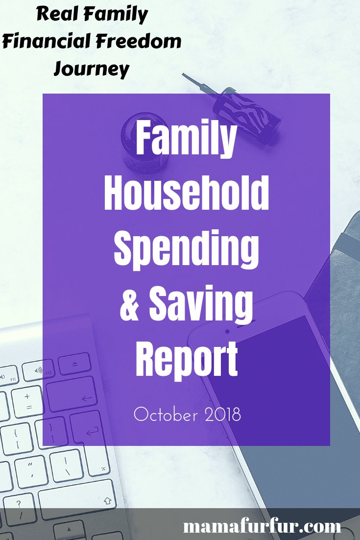 Family household spending and saving report - Real Debt Free Family UK