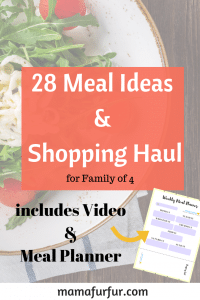 october 28 Meal Ideas and Meal Planner printable #budgeting #mealplanning #familyfood