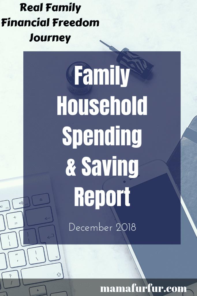 Household family spending report December 2019 #budgeting #familyfinances #debtfreeuk