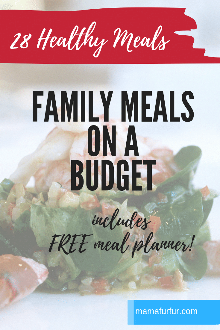 Healthy Family meals on a budget #mealplanning #healthymeals #family