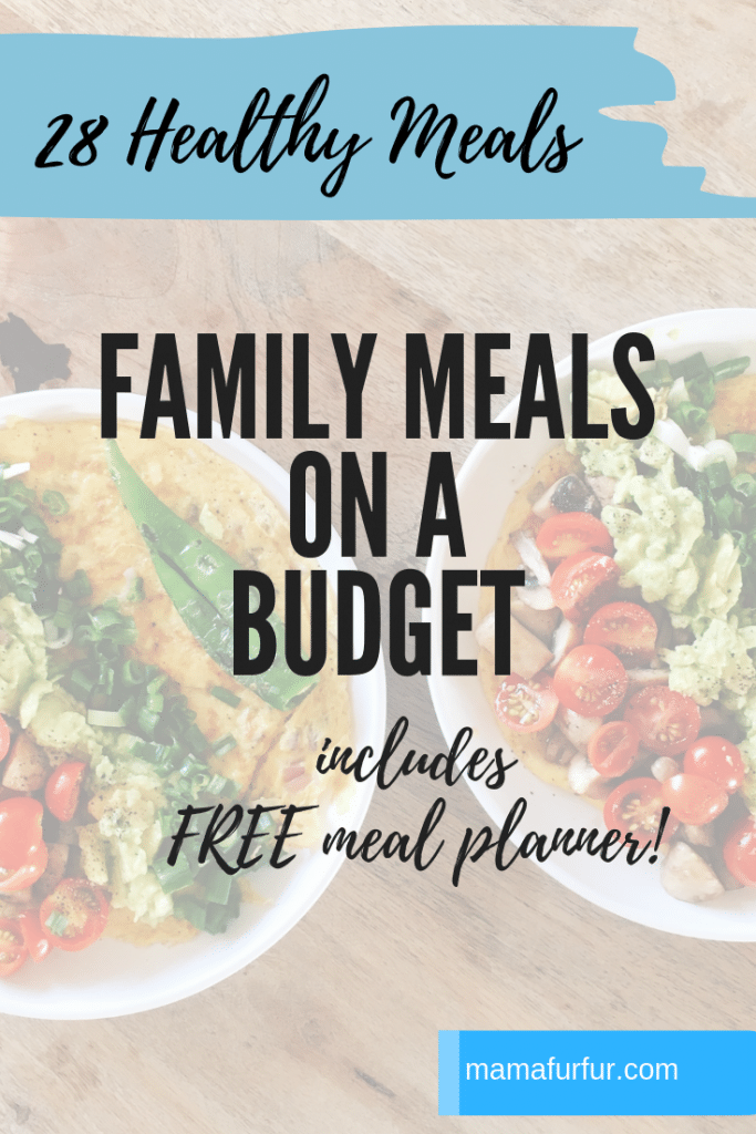 Family Meals ideas on a Budget June 2019