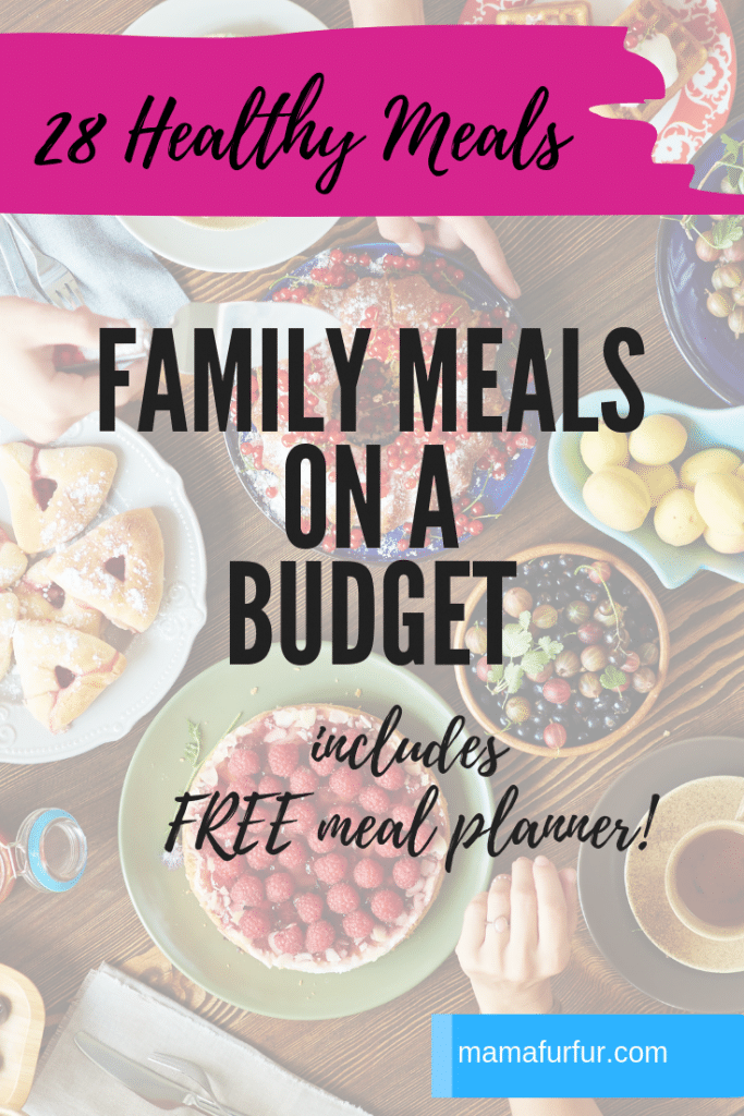Family meals on a budget - real life Family Meals